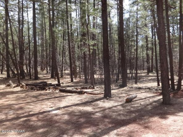 6126 Buck Springs Rd., Pinetop, AZ 85935 Photo 139