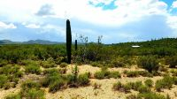 Home for sale: Tbd S. Enchanted Valley, Tucson, AZ 85739