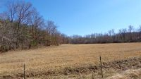 Home for sale: 0 Moore Rd., Paris, TN 38242