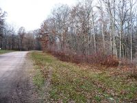 Home for sale: Lot 13 Dickerson Avenue, Willard, WI 54493
