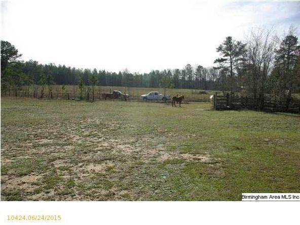 4 Horton Mill Rd., Oneonta, AL 35121 Photo 2