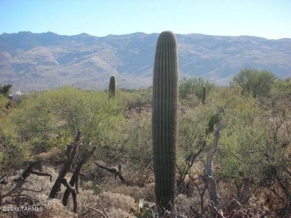 11435 E. Calle Javelina, Tucson, AZ 85748 Photo 13