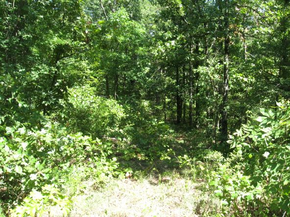 16.38 Acres Layer Ln., Harrisburg, AR 72432 Photo 4