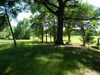 Home for sale: Backwood Ln., Dardanelle, AR 72834