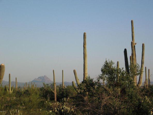 12229 W. Fort Lowell, Tucson, AZ 85743 Photo 10
