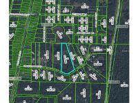 Home for sale: 35415 Ranchette Blvd., Webster, FL 33597