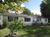 Home for sale: 4732 Sycamore Rd., Newport, MI 48166