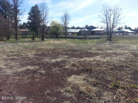 3364 Kay Rd., Lakeside, AZ 85929 Photo 13