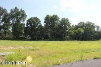 Home for sale: 1105 Falcon Ct., Carterville, IL 62918