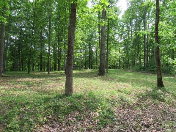 16-Lot The Woods At Wolf Creek, Jabez, KY 42544 Photo 9