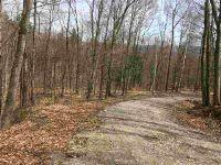 Home for sale: 2 Grass Mountain Rd., Arlington, VT 05250