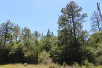 Home for sale: 0 Lakepoint Rd., Alford, FL 32420