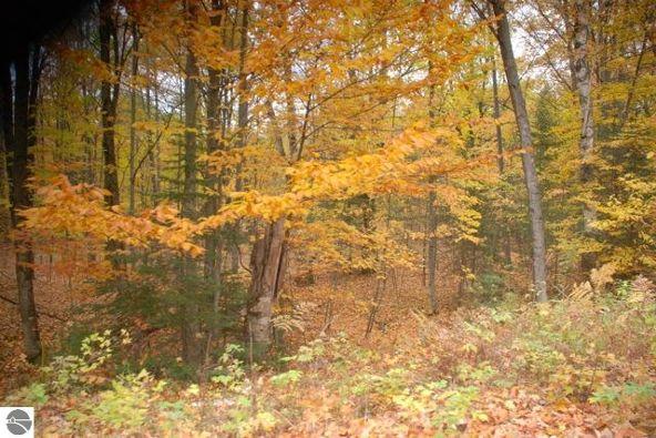 19 Balsam Trail, Kewadin, MI 49648 Photo 5