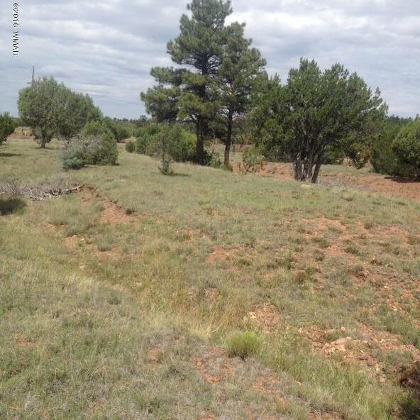 4036 Jasmine Ln., Overgaard, AZ 85933 Photo 3