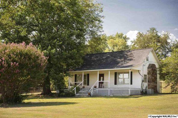 3373 County Rd. 214, Hillsboro, AL 35643 Photo 6