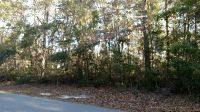 Home for sale: Lot 24 White Chimney Cove, Townsend, GA 31331