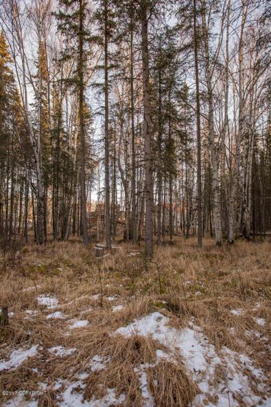 1800 That Rd., Wasilla, AK 99654 Photo 3