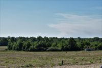 Home for sale: 140 +/- Ac Ellis Hodge Rd., Lucedale, MS 39452