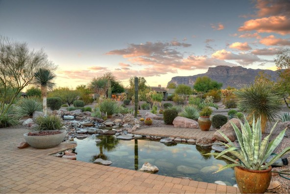 6330 E. Flat Iron Loop, Gold Canyon, AZ 85118 Photo 28