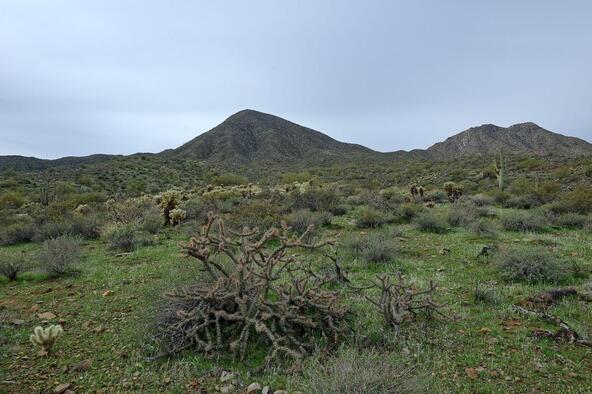 13929 E. Big Horn Parkway, Fountain Hills, AZ 85268 Photo 10