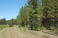 Home for sale: Tbd Woods Rd., Weippe, ID 83553