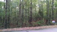 Home for sale: 0 Copeland Rd., Pine Mountain Valley, GA 31823
