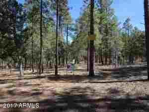1090 W. Sadler Ln., Lakeside, AZ 85929 Photo 31