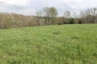 Home for sale: 1-B Ogden Ridge Rd., Mount Olivet, KY 41064