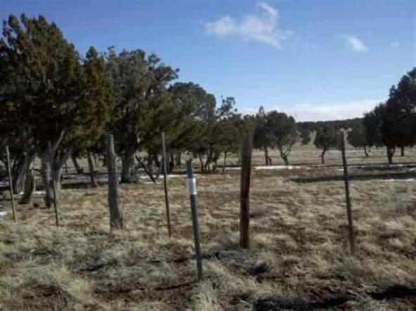 5 Or 10 Ac Turkey Lake Rd., Show Low, AZ 85901 Photo 11