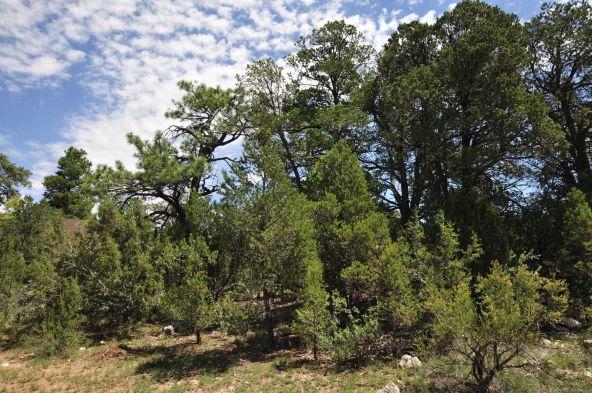 3146 Ranch Rd., Overgaard, AZ 85933 Photo 1