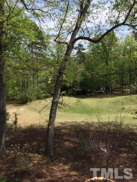 54505 Craig, Chapel Hill, NC 27517 Photo 20