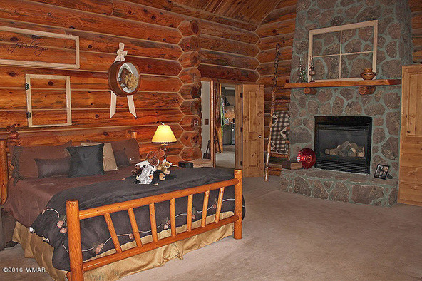 38721 State Route 373, Greer, AZ 85927 Photo 33