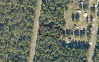 Home for sale: 205th Ln., Live Oak, FL 32060