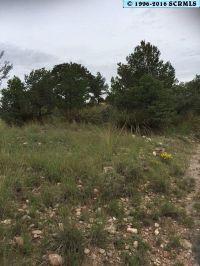 Home for sale: 265 Camino de Viento, Silver City, NM 88061