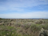 Home for sale: Tbd Canal Ln., Fruitland, ID 83619
