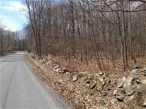 Toad Pasture Rd., Middletown, NY 10940 Photo 3