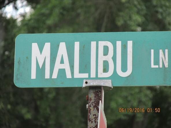 95 Malibu Ln., Killen, AL 35645 Photo 3