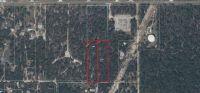 Home for sale: 0 Ehrenwald Tract 20 Dr., Weeki Wachee, FL 34614