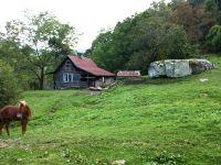 Home for sale: Tbd Ward Branch Rd., Sugar Grove, NC 28679