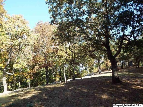 11 S. County Rd. 89, Mentone, AL 35984 Photo 14