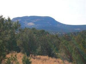 491 Westwood Ranch Lot 491, Seligman, AZ 86337 Photo 11