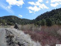 Home for sale: Apn 007-700-14 Mill Creek, Battle Mountain, NV 89820