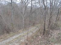 Home for sale: 0 Ky Hwy. 465, Sparta, KY 41086
