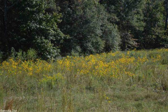 32 Meadow Crest, Sherwood, AR 72120 Photo 47