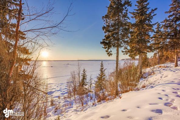 10880 Kamishak Bay Cir., Anchorage, AK 99515 Photo 40