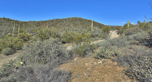 45 N. Cottonwood Canyon Rd., Cave Creek, AZ 85331 Photo 15