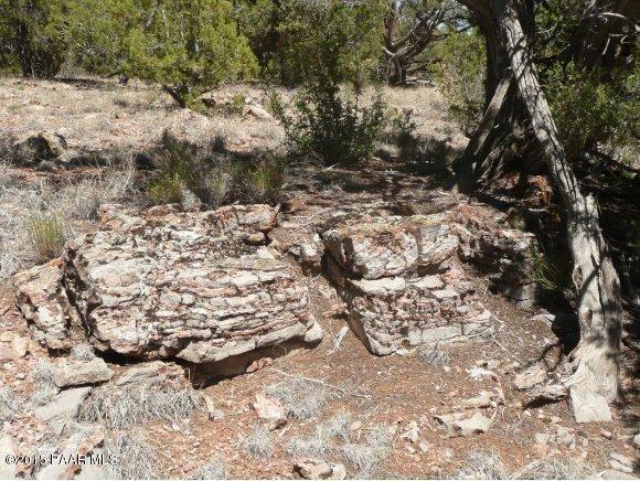 1024 Sierra Verde Ranch, Seligman, AZ 86337 Photo 16