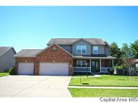 Home for sale: 330 Osteen Ln., Chatham, IL 62629