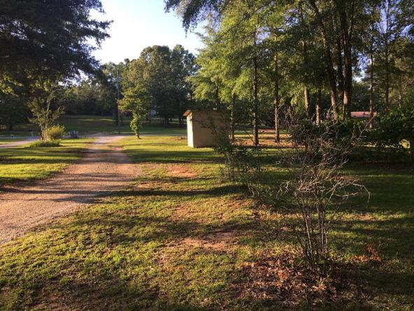 345 Bennett Dr., Abbeville, AL 36310 Photo 53