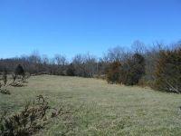 Home for sale: South Farm Rd. 97, Republic, MO 65738